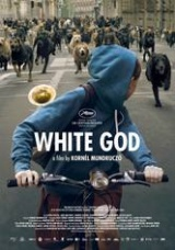 Win-1-or-3-White-God-DVDs