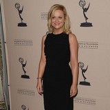 Poehler:-Moon-wives-will-be-next-marriage-trend