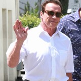 Schwarzenegger-not-rushing-divorce