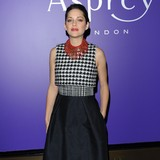 Marion-Cotillard-clears-mind-for-movies
